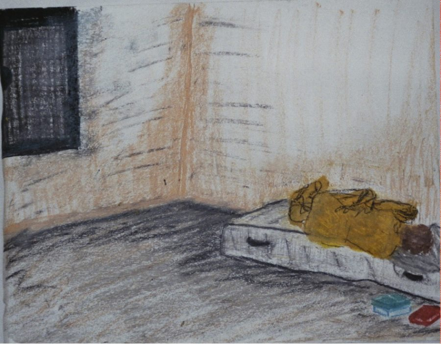 """""""Isolation as Punishment."""" A Pastel by Karen Haines RP MScN"""
